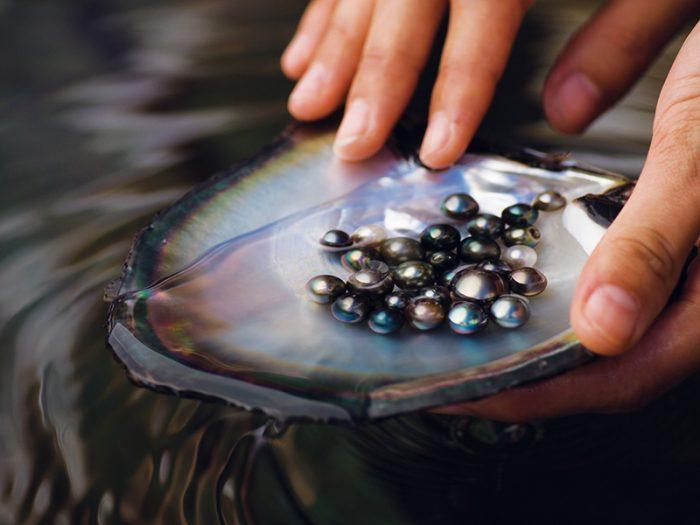 perles et nacre - Polynésie